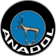 ANADOL FORD SOFTWARE
